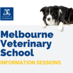 melbourne veterinary school